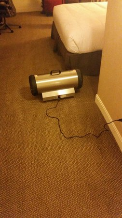 Hilton Atlanta : Walked into this room to find a dryer attempting to dry out the damp carpet. Do not stay at this