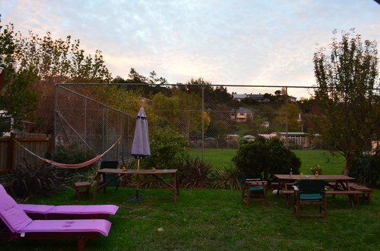 The Bug Backpackers: Backyard
