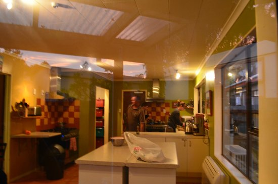 The Bug Backpackers: Kitchen/dining area