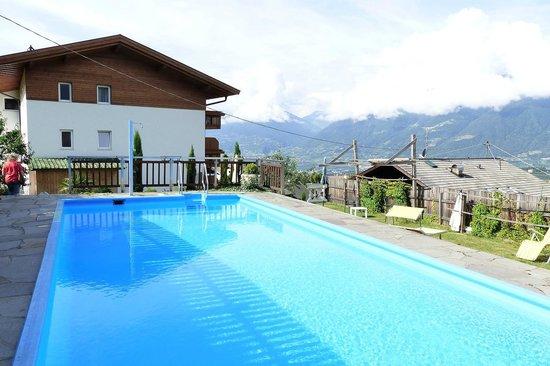 Hotel Hofler Fernblick: schöner Pool