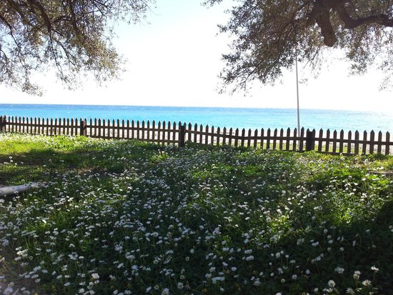 Altea Beach Lodges: the view