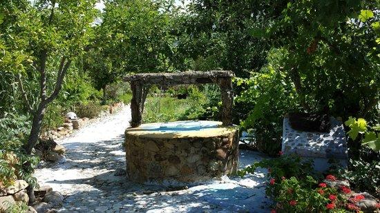 Auberge Dardara: A well