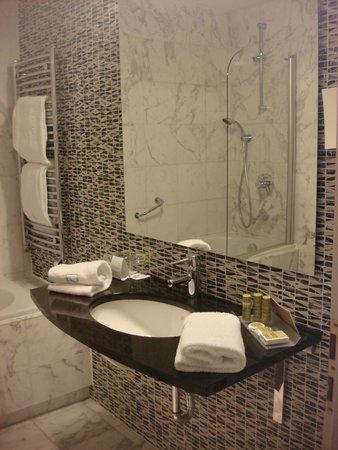 Eurostars David: Toilette
