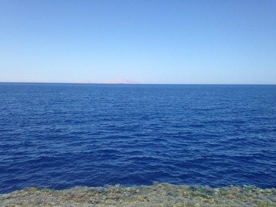 Sunrise Diamond Beach Resort: Red Sea x