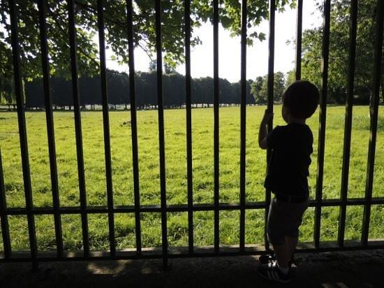 Trianon Palace Versailles, A Waldorf Astoria Hotel: au calme au bout du jardin