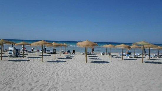 Sol Milanos Pinguinos: Beautiful Beach
