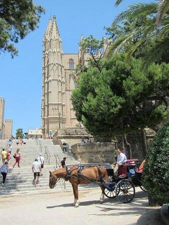 Catedral de Mallorca : Кафедральный собор Пальмы (Ла Сеу)