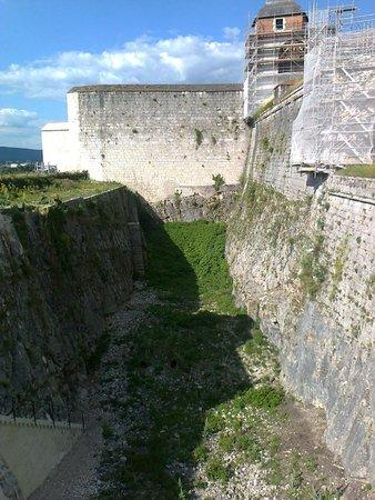 """La Citadelle de Besançon : Il fossato """"abitato"""" dai babbuini"""
