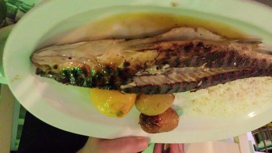 Kounelas Fish Tavern: Il mio branzino