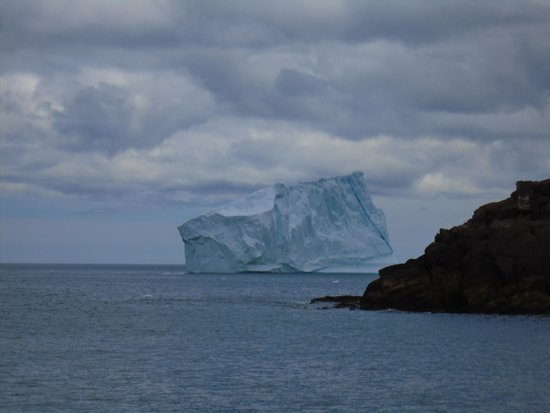 Iceberg Quest Ocean Tours: Getting the first sight of a berg
