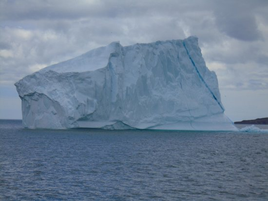 Iceberg Quest Ocean Tours: another view of the berg.