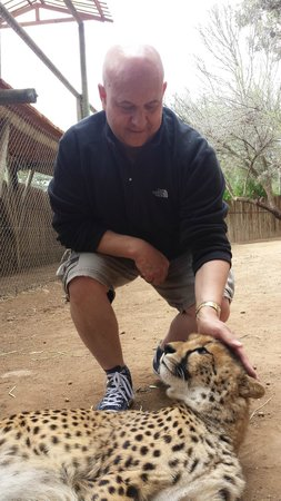 Die Gat Guest House: Cheetah experience close by