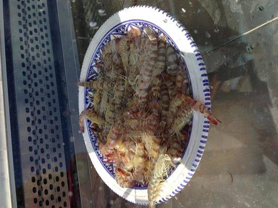 Hotel Dar El Bhar: Gambas la pêche du matin un régal pour le repas