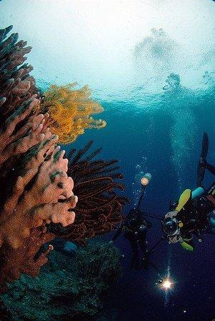 Eden Resort: под водой