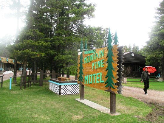 Mountain Pine Motel: Welcome!