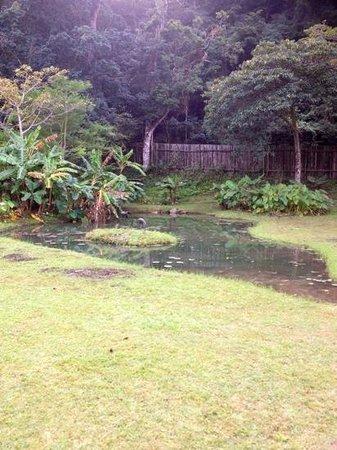 Cremorne Riverside Holiday Resort : natural surroundings