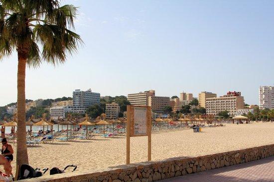 Zafiro Palmanova: Der Nahgelegene, saubere Strand