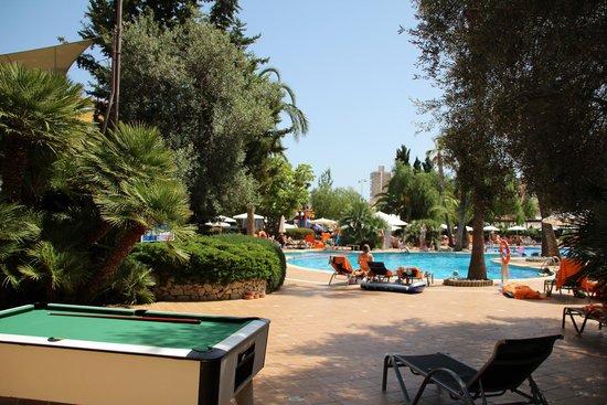 Zafiro Palmanova: Poolbereich