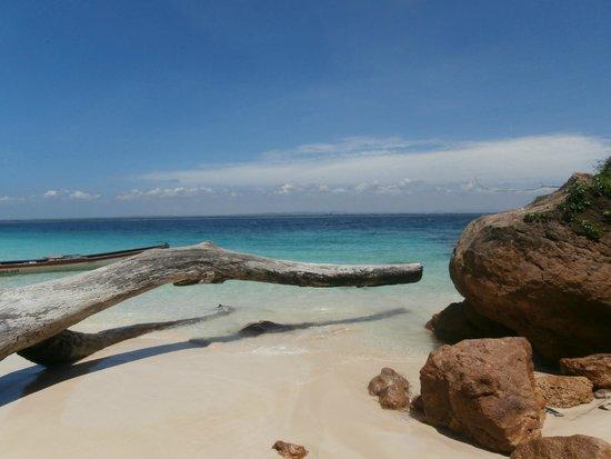 Isla Iguana: l'acqua