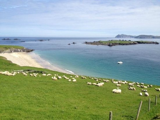 Great Blasket Island Accommodation: View from the hostel