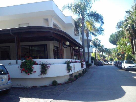 Hotel Pace: ingresso