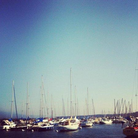 Lac Léman (Lac de Genève) : lac léman