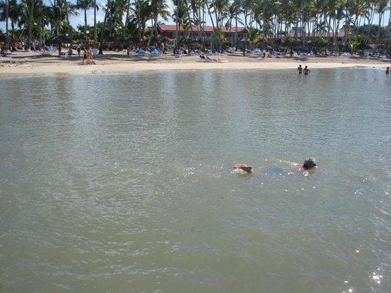 Grand Bahia Principe La Romana: personne à l'eau