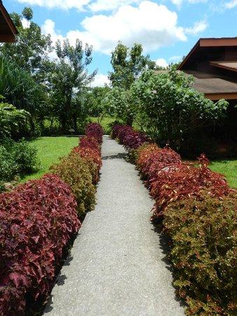 Hotel El Silencio del Campo : Sidewalk headed towards spa area from villa 20.