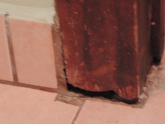 Pachira Lodge: Rotos por donde hay bichejos que van y vienen