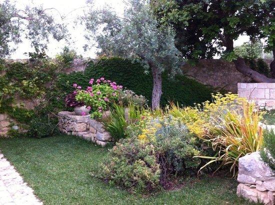 Tenuta Cammarana : i giardini in giugno