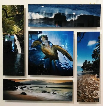 Reeflections Fine Art Gallery: Some pics to choose from (#2)
