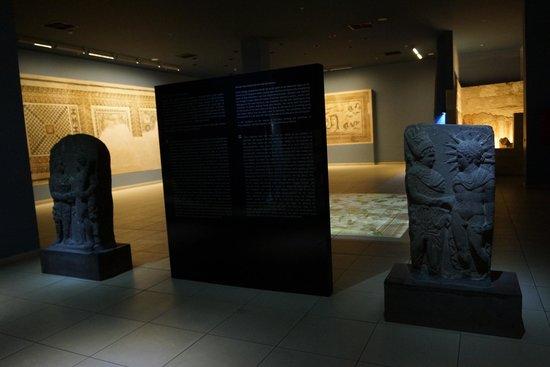 Musée archéologique de Gaziantep : Zeugma Mozaik Müzesi 1