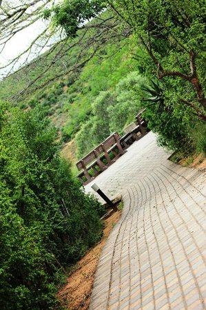 Addo Elephant National Park: Park