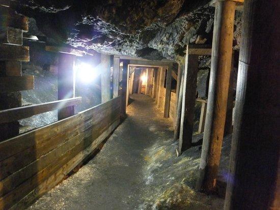 Broken Boot Gold Mine: Mine shaft