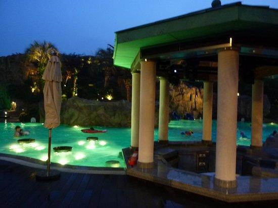 Lotte Hotel Jeju: プール