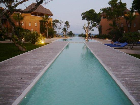 Medina Palms: Serene
