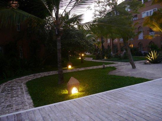 Medina Palms: Taking a walk