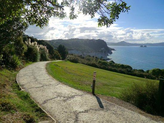 Cathedral Cove Walk: Début du sentier