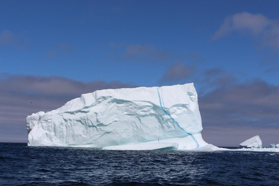 Iceberg Quest Ocean Tours: The first iceberg I've ever seen live and in person