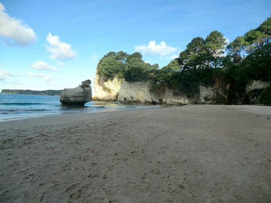 Cathedral Cove Walk: Plage