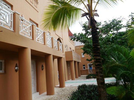 Medina Palms : N