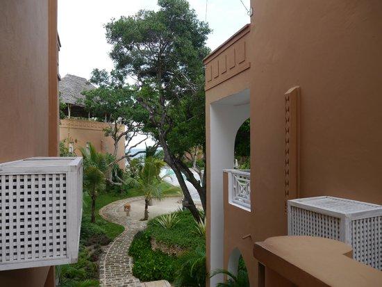Medina Palms: Walk