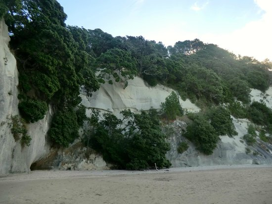 Cathedral Cove Walk: Roches lisses