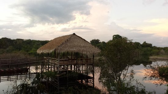 Tariri Amazon Lodge: Recreation area