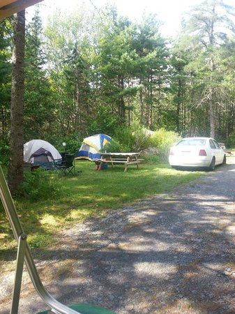 Lahave River Campground : Tent sites