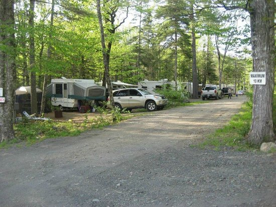 Lahave River Campground : River Road