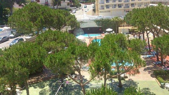 Hotel Oasis Park: Vistas desde el balcón de la habitación