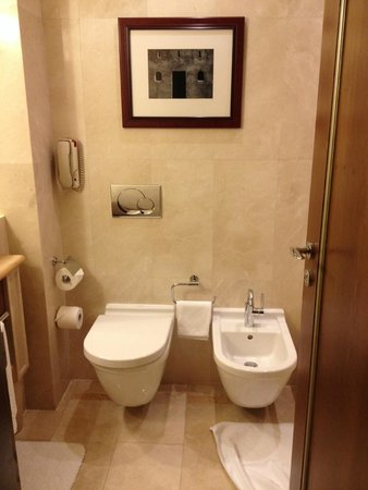 Al Bustan Palace, A Ritz-Carlton Hotel: Bathroom
