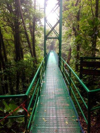 Santa Elena Skywalk : first bridge of the park