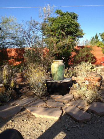 Spin and Margie's Desert Hideaway: Water Feature